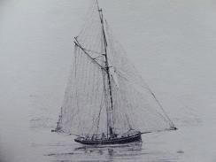 Mouette 1871